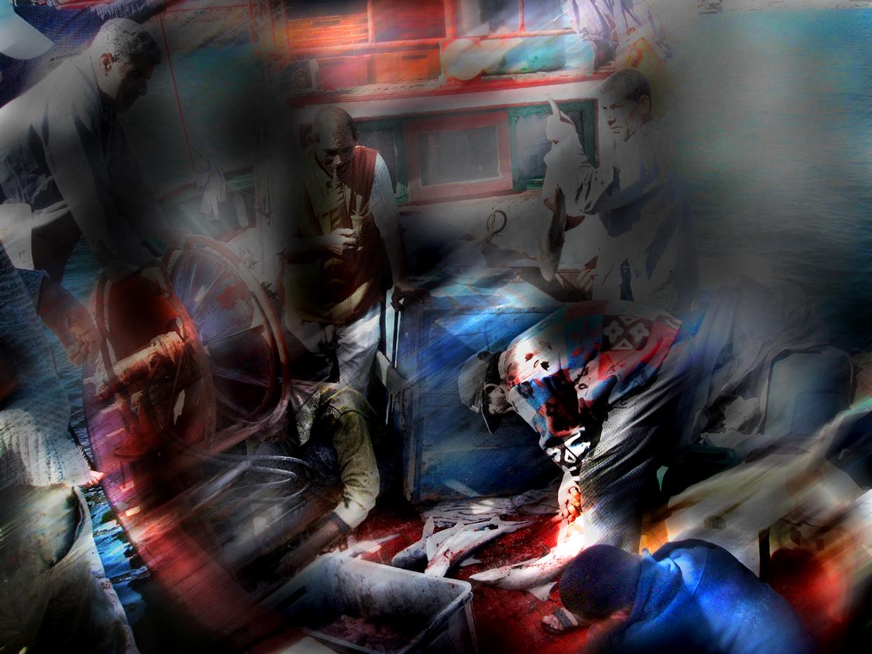Bagno di sangue per l 39 uomo el mare maurinomangiapanino opera celeste network - Bagno di sangue ...