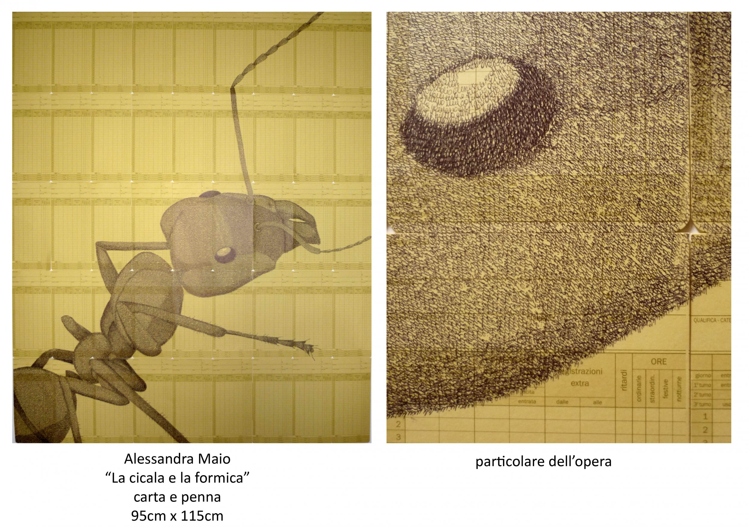 La cicala e formica alessandra maio opera celeste