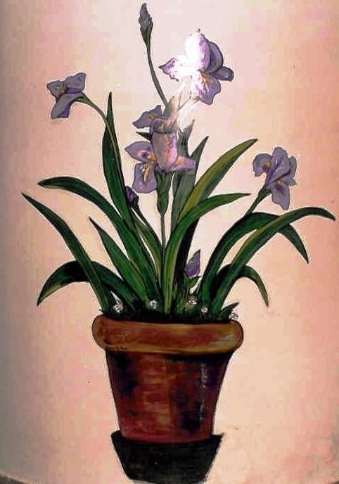 Pianta con fiori viola anna de rosa opera celeste network for Pianta fiori viola