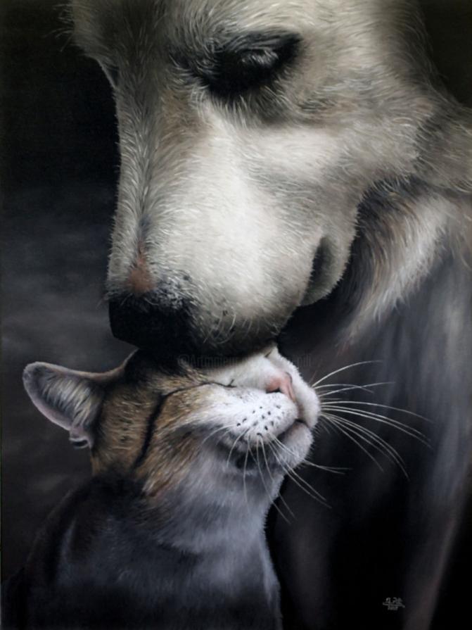 """Animal stories #1"""