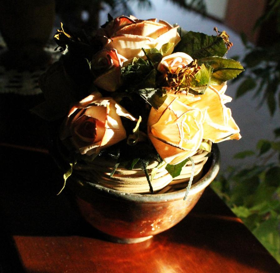 vaso e luce 1